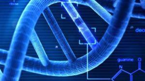 lentiviral plasmids product